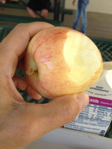 a nice-sized apple